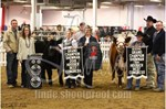 HBC Grand and Reserve Grand Showman 2019